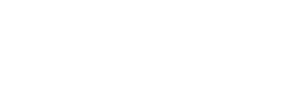 DOMINISTYLE